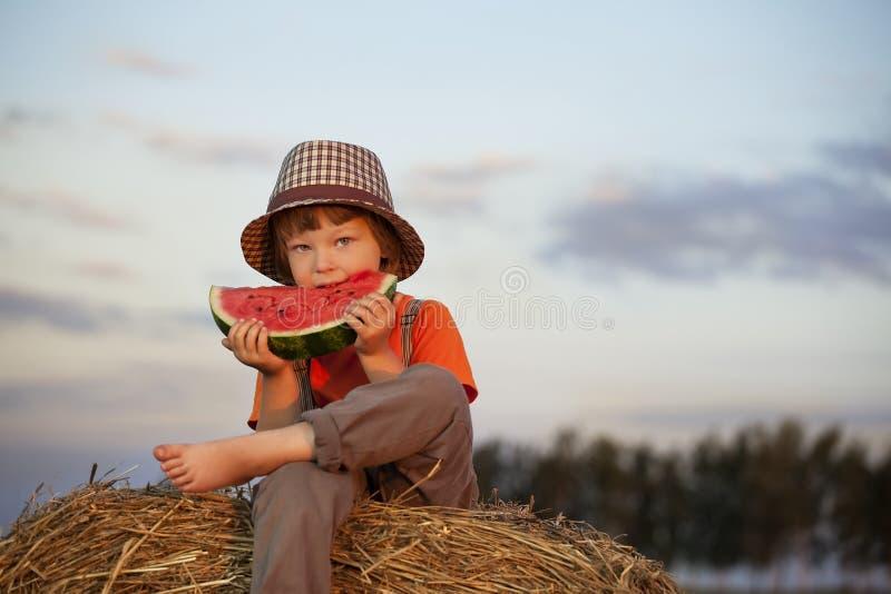 Boy eating watermelon royalty free stock image