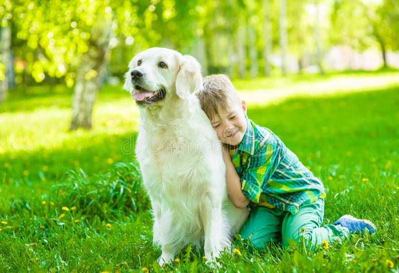 Boy embraces a golden retriever dog on the green grass royalty free stock photo
