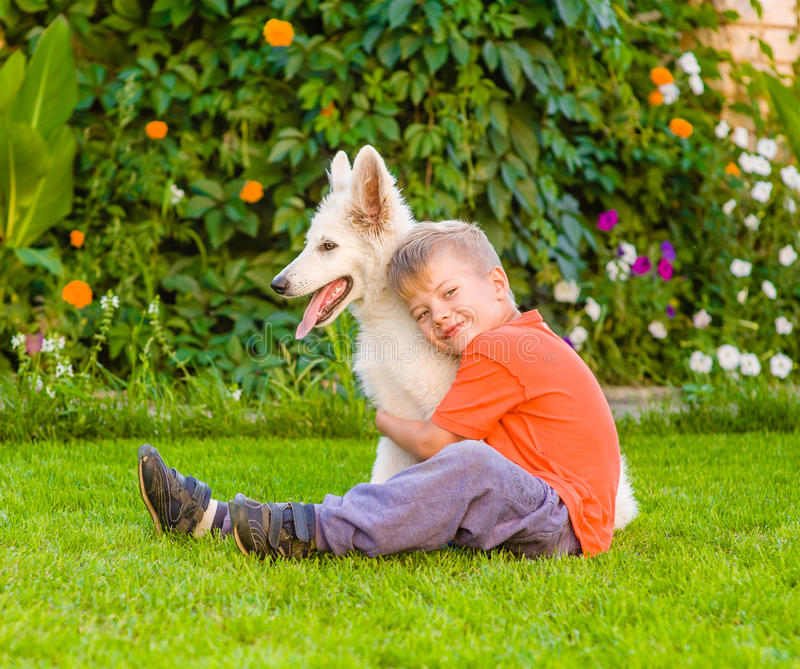 Boy embracing White Swiss Shepherd`s puppy on green grass royalty free stock image