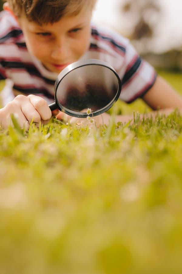 Boy exploring garden using magnifying glass. Kid playing with magnifying glass outdoors. Boy exploring garden using magnifying glass at the park royalty free stock photos