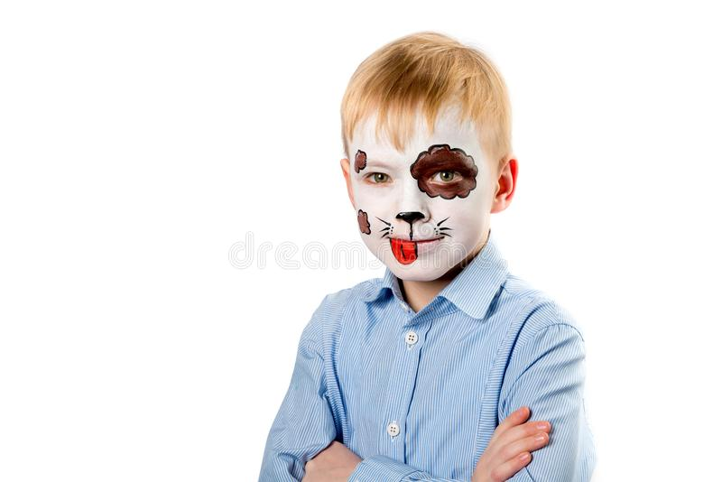 Boy with face painting as a dog. Funny boy with paintings on his face as a dog looking at camera isolated on white background royalty free stock images