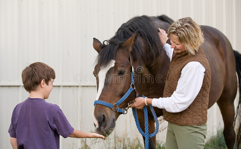 Boy Feeding Horse. Little Boy Happy to be Feeding a Horse