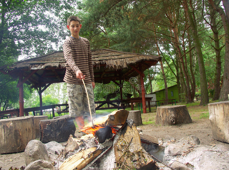 Download Boy by the fire stock image. Image of flame, camp, trees - 6312207