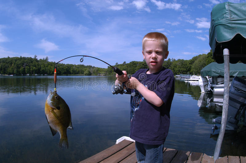 Boy Fishing royalty free stock photography