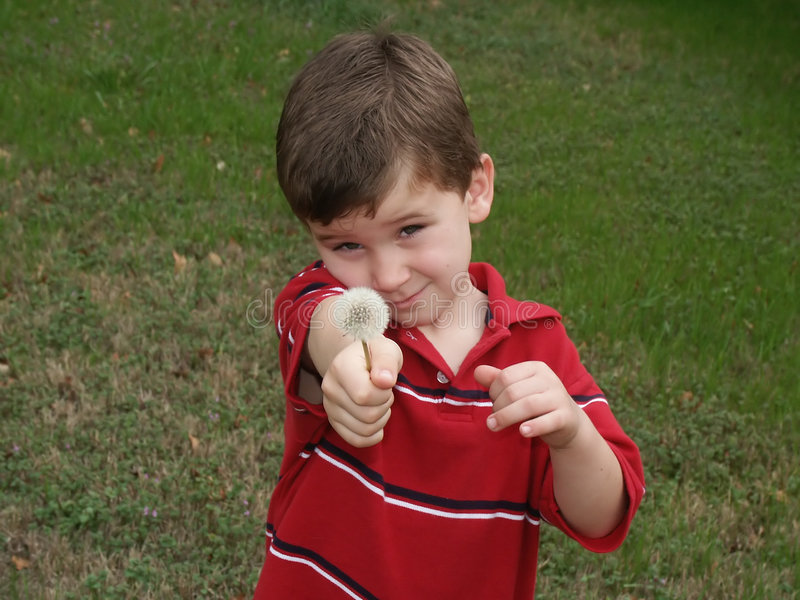 Boy with flower 1. A shy young boy showing or giving a dandelion flower seed pod (blow flower royalty free stock photography