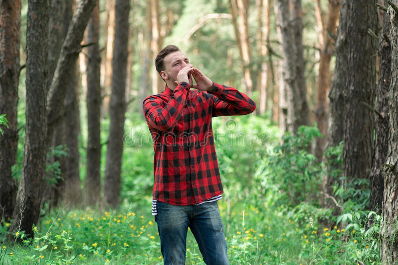 The boy in forest stock image