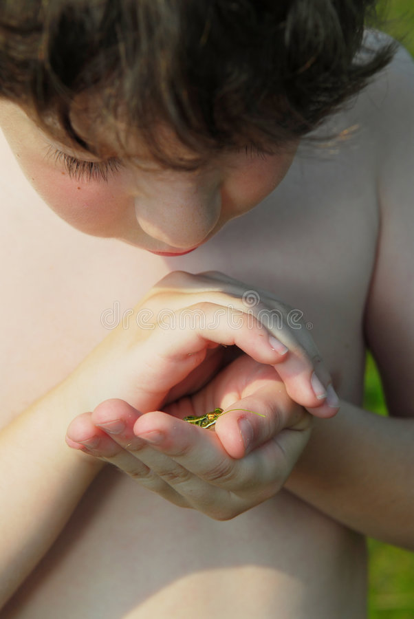 Download Boy and frog stock image. Image of hands, childhood, amused - 2900707