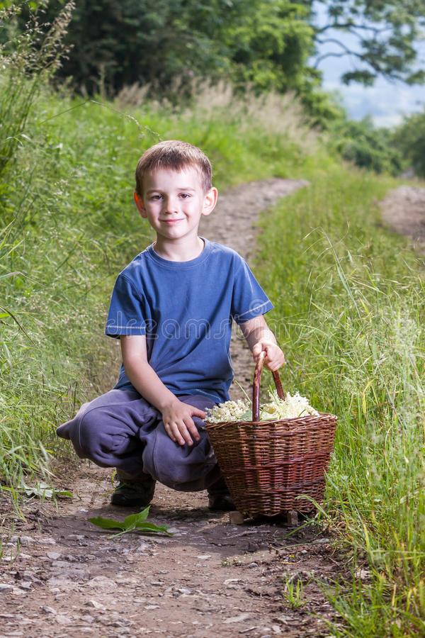 Boy with full herbs flower basket on way stock images