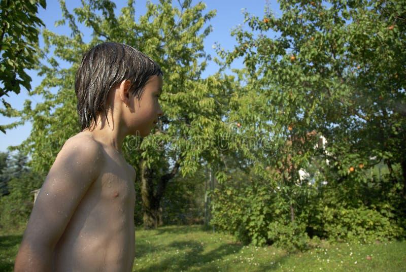 Download Boy in garden stock photo. Image of body, clear, european - 1270246