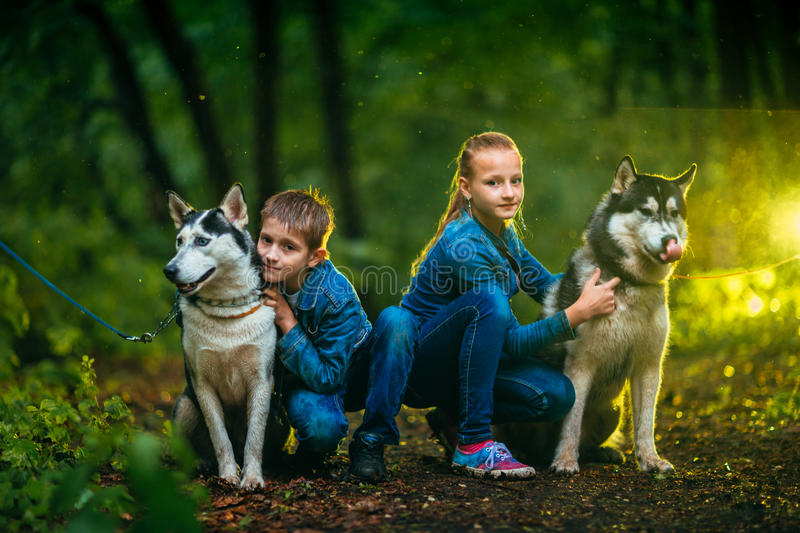 Boy and girl as well as dog husky on background of the forest stock photography