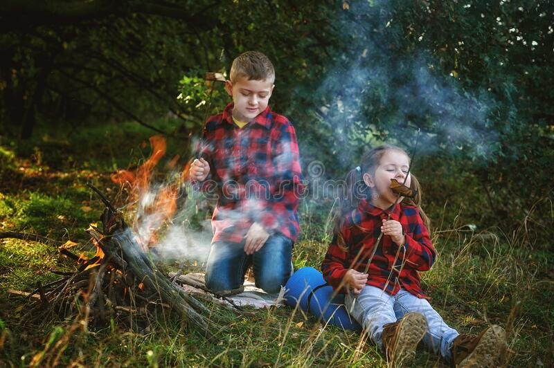 Boy and girl on a country picnic with a fire. Children on a picnic in nature by the fire . Brother and sister roasting bread on the fire royalty free stock photo