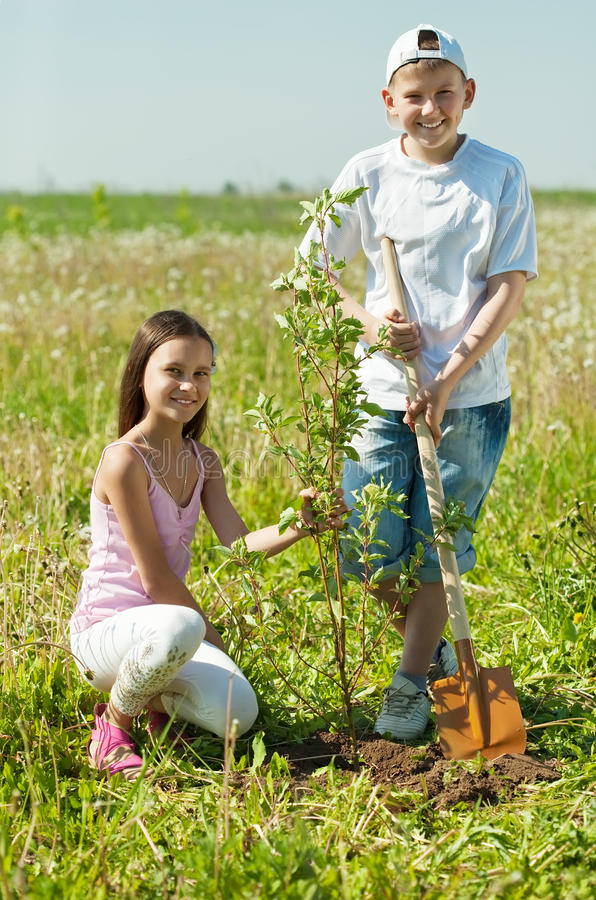 Boy and girl planting tree royalty free stock photo