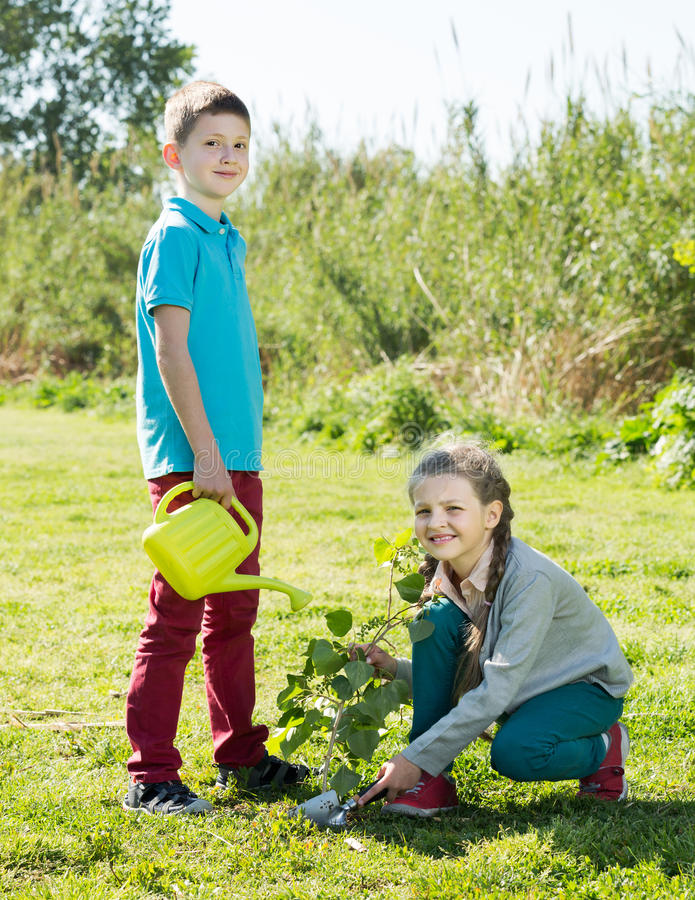 Boy and girl planting a tree royalty free stock photos