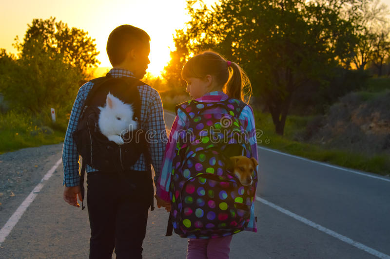 Boy and girl on the road. Boy and girl walking on the road together holding hands at sunset. They always take their pets with them, pet rabbit and small puppy