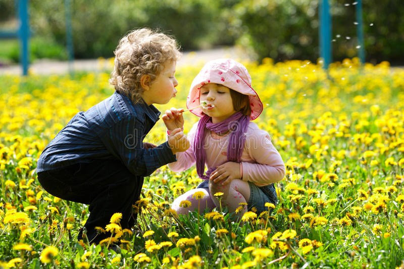 Boy and girl in summer flowers field royalty free stock photography