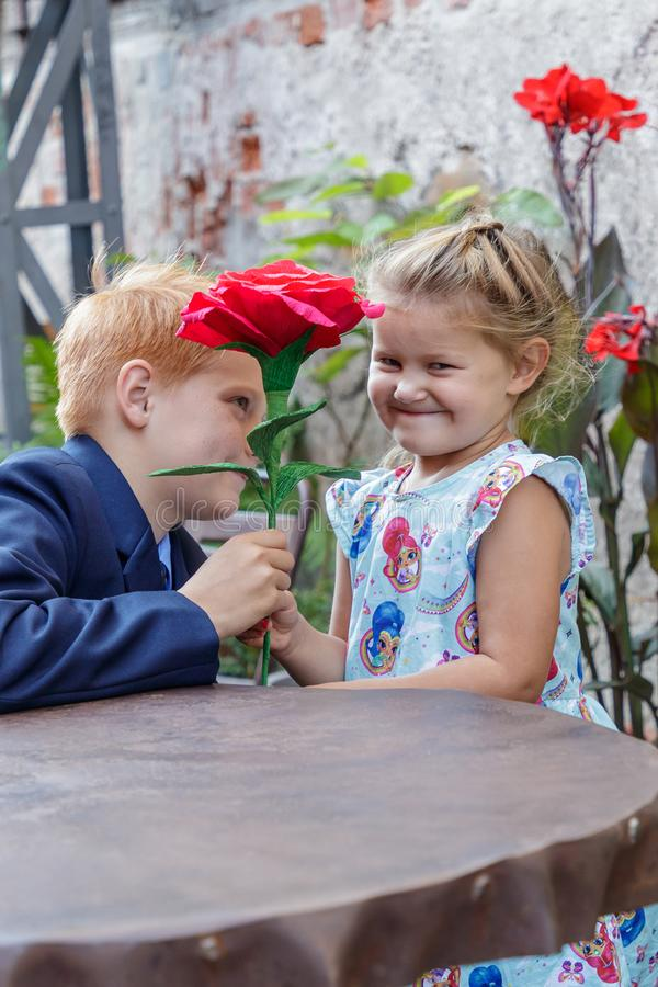 Boy gives girl a red flower royalty free stock images