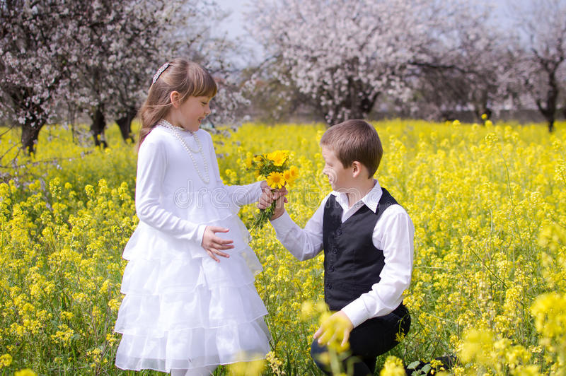 Boy giving girl flowers. Boy giving girl bouquet of flowers on his knees on the beautiful field of yellow flowers stock photo