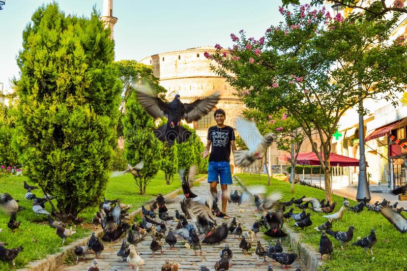 The boy and the pigeons. The boy is glad to meet with the flock of street pigeons