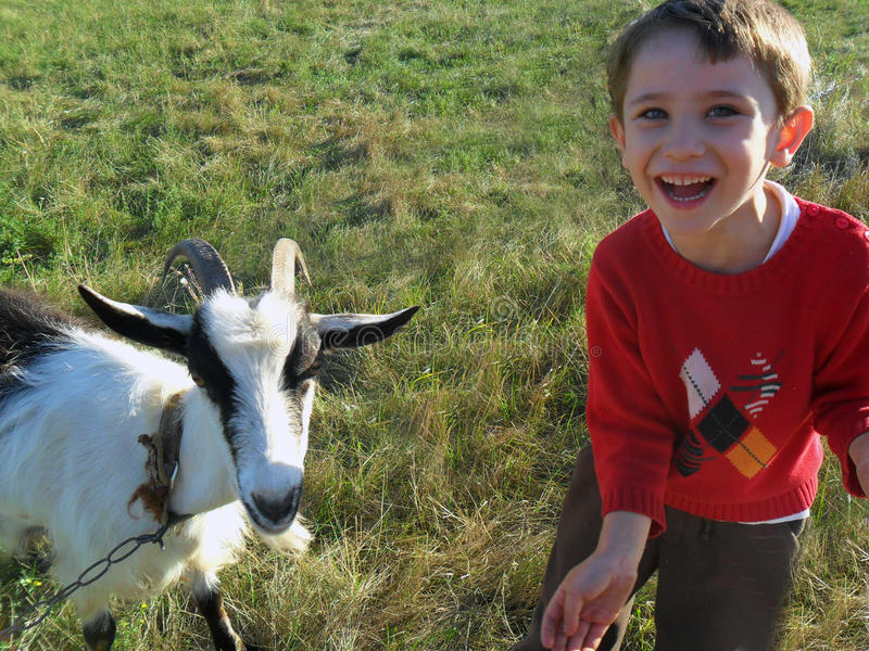 Boy and goat royalty free stock image