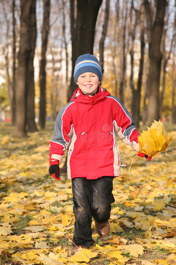 Download Boy Goes For A Walk In Park In Autumn Stock Image - Image: 3907165