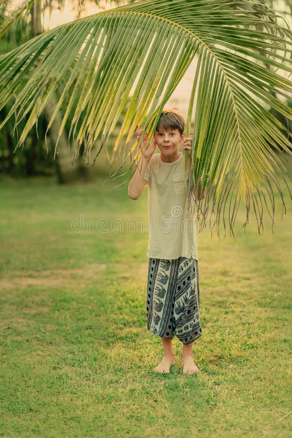 The boy on the green grass holding a palm branch. On a Sunny summer day on green grass boy and a large palm branch royalty free stock photography