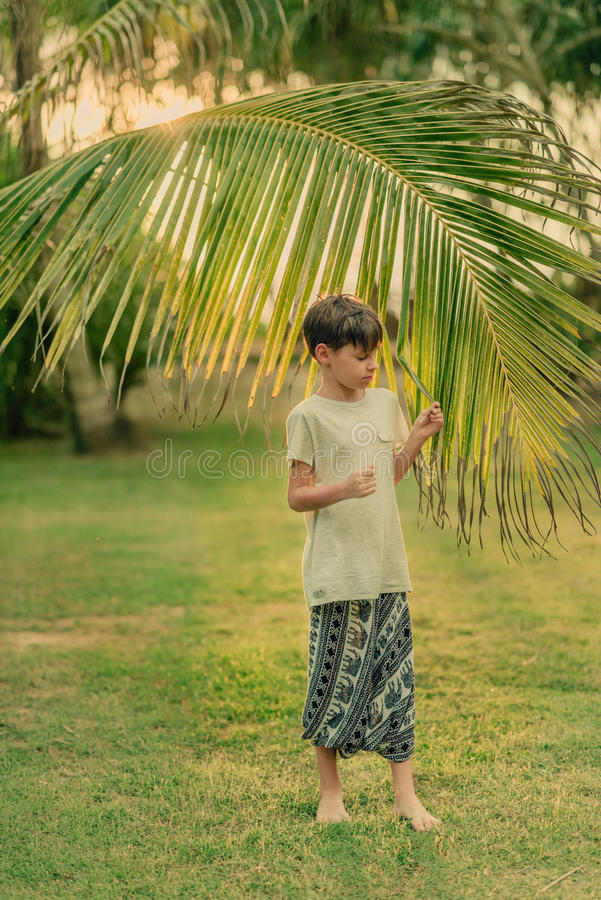 The boy on the green grass holding a palm branch. On a Sunny summer day on green grass boy and a large palm branch royalty free stock images