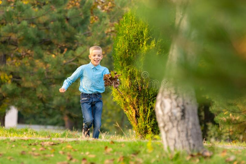 The boy happily runs through the park on the green grass royalty free stock photography