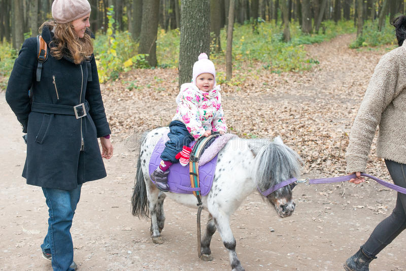 Boy in a hat of Santa Claus and his pony. Laughing happy child in autumn park on pony horse. royalty free stock photos
