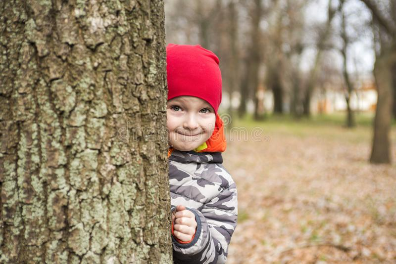 The boy hides behind a tree in the park. A child looks out from behind a tree, playing hide and seek on the street. Little boy is stock images