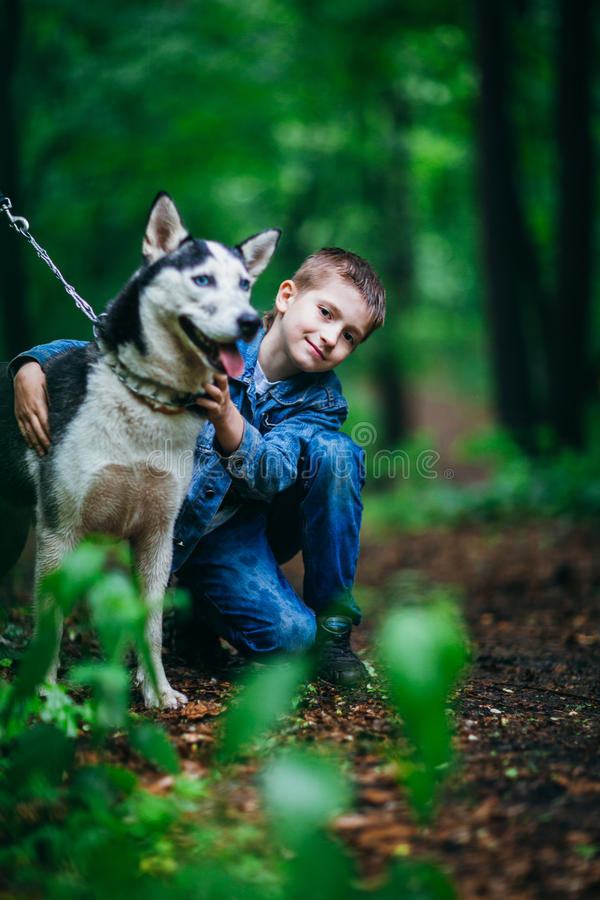 Boy and his dog husky on the background of leaves in spring stock photos