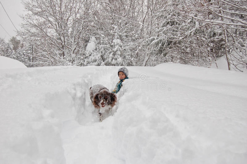 Boy and his dog out in a snow storm royalty free stock photography