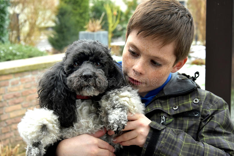 Boy and his dog. Teenager boy with his harlequin poodle