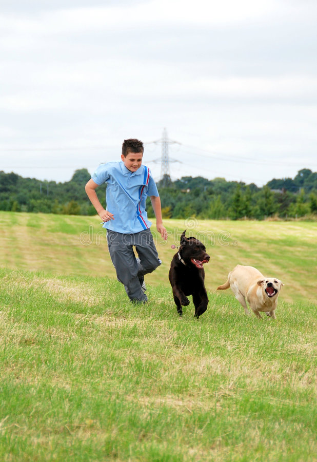 Download Boy And His Dogs Royalty Free Stock Photography - Image: 5836997