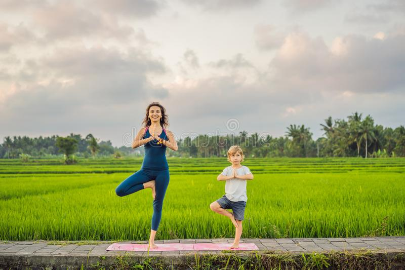 Boy and his yoga teacher doing yoga in a rice field.  royalty free stock photo