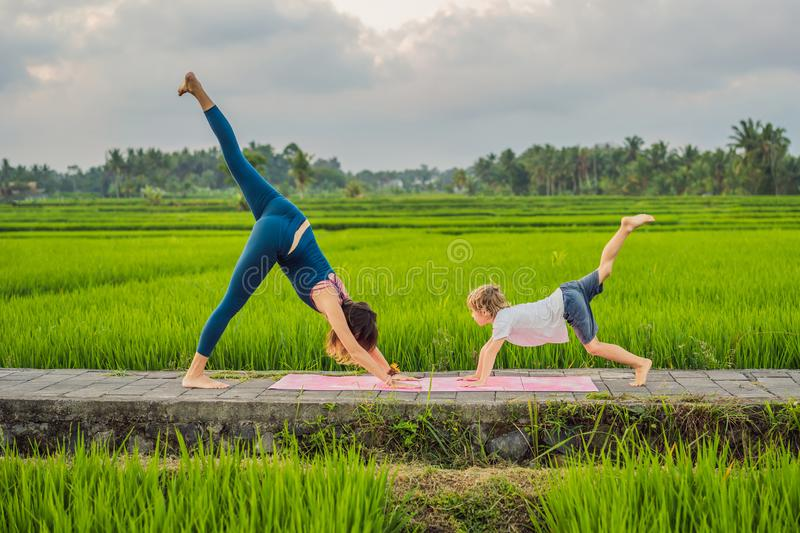 Boy and his yoga teacher doing yoga in a rice field stock photography