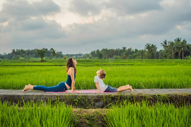 Boy and his yoga teacher doing yoga in a rice field.  stock photo