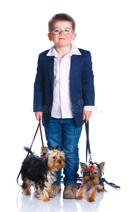 Boy with his Yorkshire terriers. Cute boy with his two Yorkshire terriers smiling at camera on isolated white background royalty free stock photography
