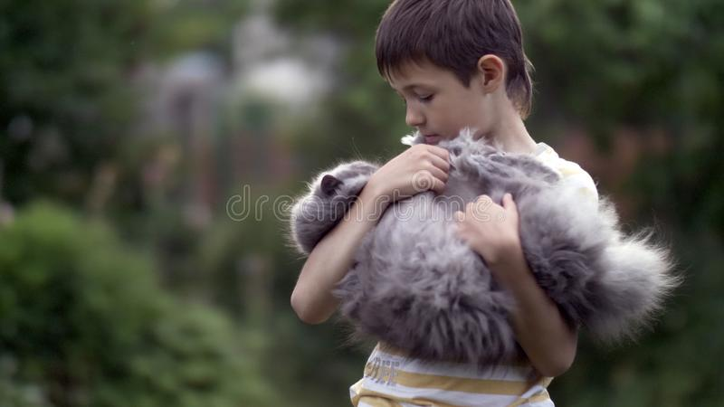 Boy holding a cat in arms in nature stock photography