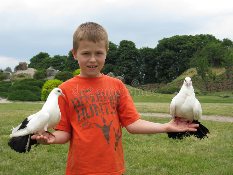 Boy Holding A Dove Royalty Free Stock Photography