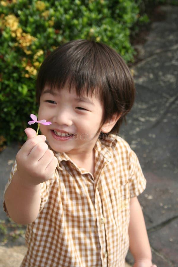 Boy holding flower stock photo