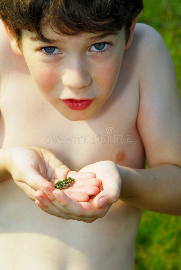 Boy holding a frog stock photo