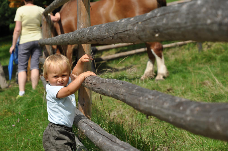 Boy with horse stock photo