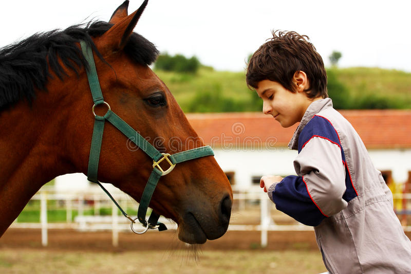 Download A boy and a horse stock image. Image of touch, background - 24983569