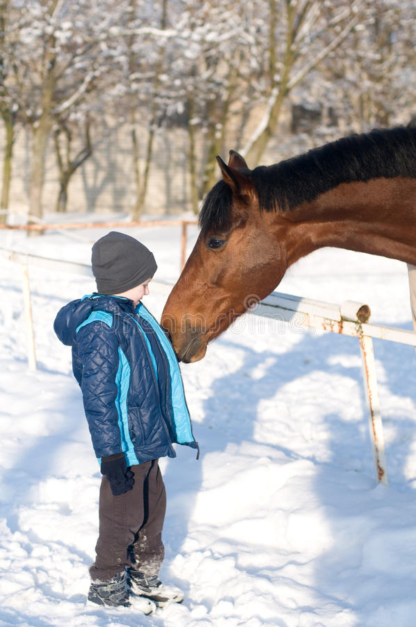 Boy and horse stock photo