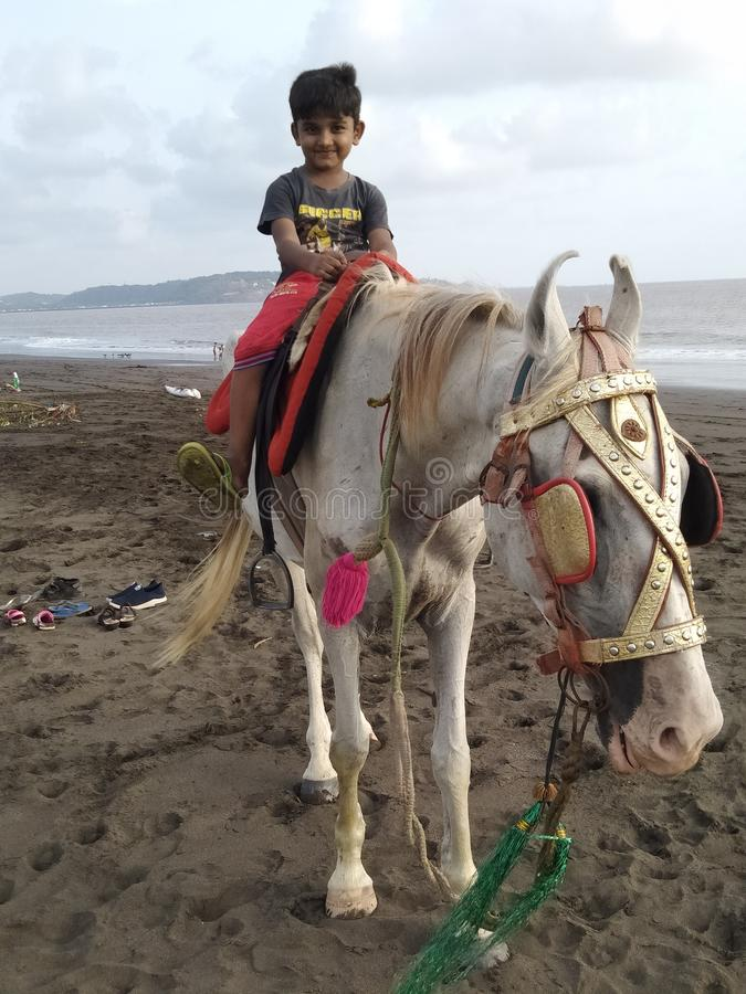 horse sex boy
