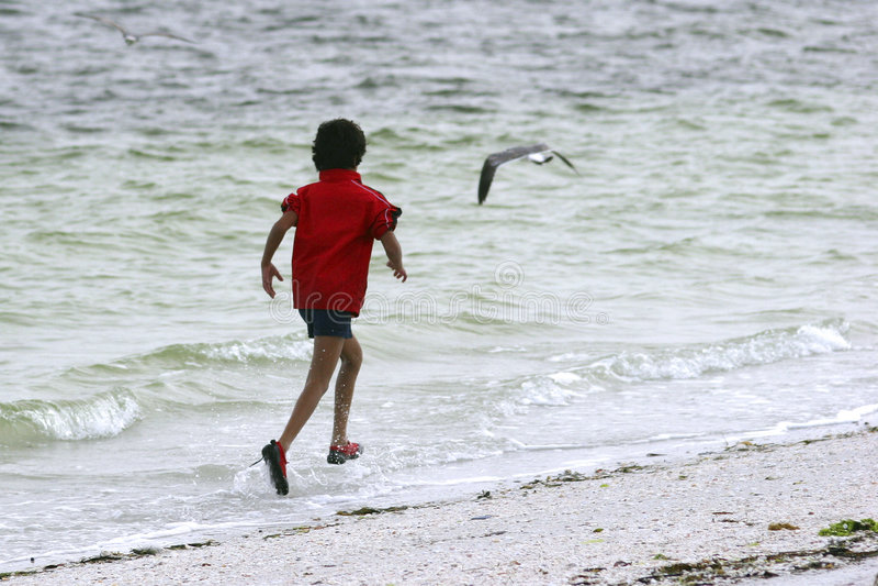 Download Boy Jogging stock image. Image of bird, active, water - 1704685