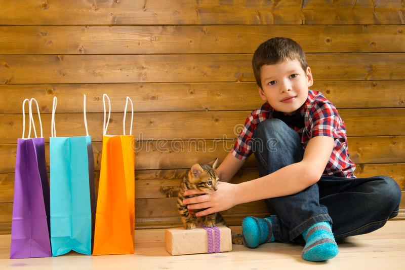 Boy with kitten, next to shopping bags with shopping and gift, on the floor against a wooden wall royalty free stock image