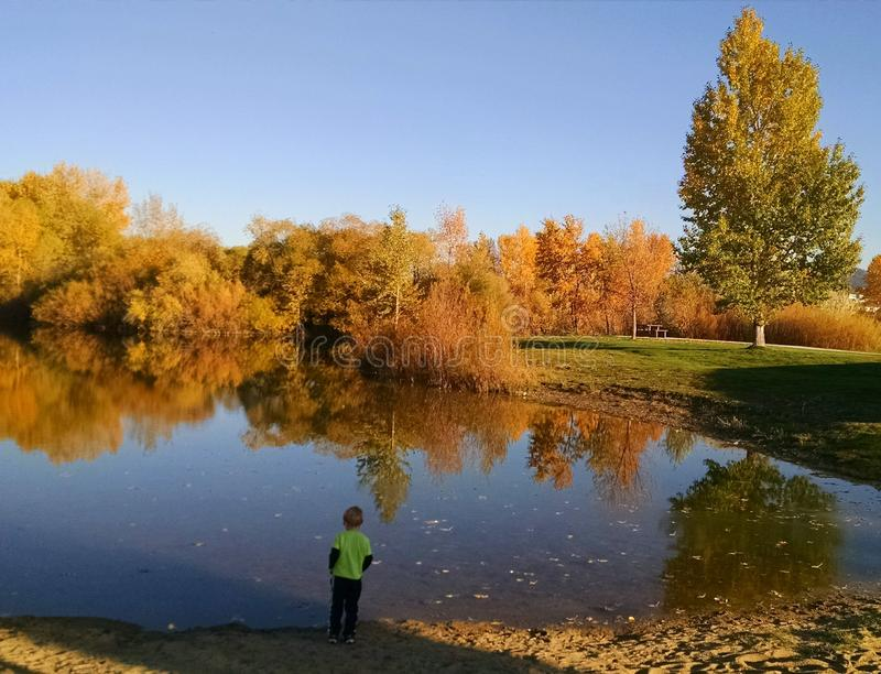 Boy by lake with fall colors in trees. royalty free stock photo