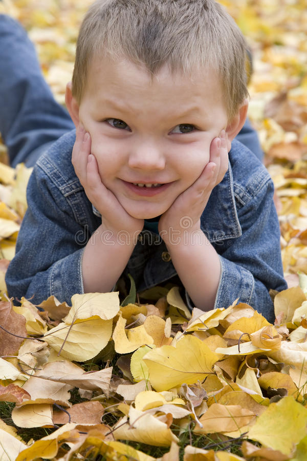 Download Boy in leaves close up stock image. Image of happy, autumn - 11557915