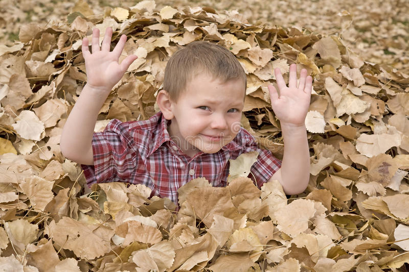 Boy In Leaves Hands Up Royalty Free Stock Photo